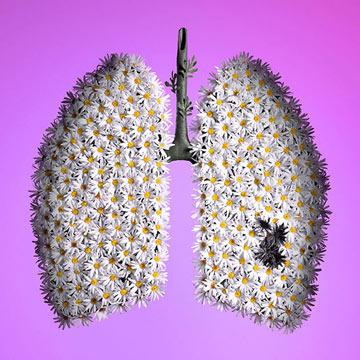 You should be knowed from Lung Cancer and Nonsmokers and how to overcome it